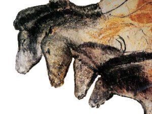 Cave paintings from Grottes des Lascaux