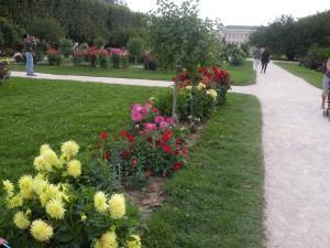 Jardin des Plantes (4)