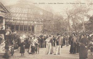 jardin monkey cage 1800