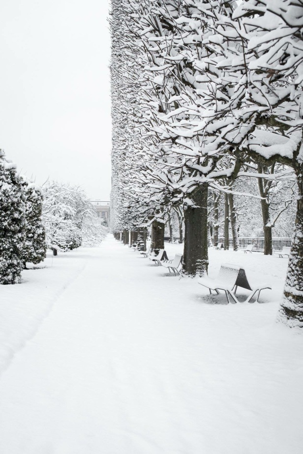 jardin snow 4