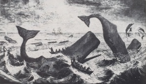 moby dick sperm whale boats