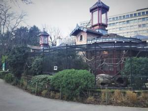 2019 Jardin Des Plantes Menagerie Hugo! (10)