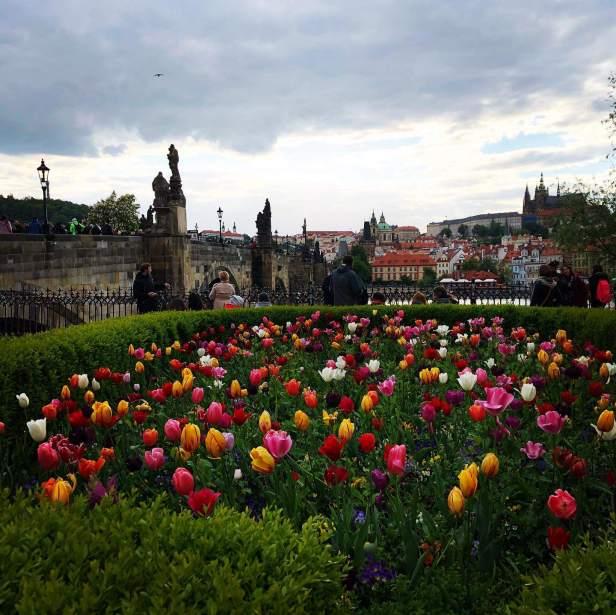 Praha Old Town (2)