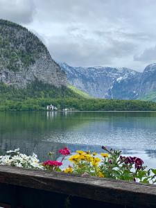 Hallstatt lake (6)