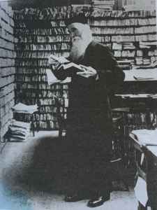 Murray in Scriptorium, pigeon holes